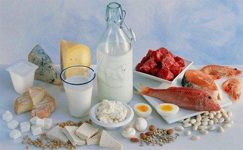 Функции белка